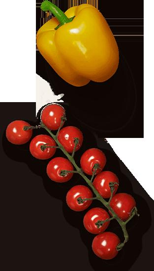 tsibulia